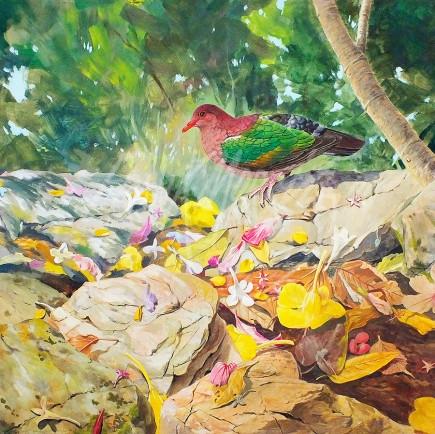 (246)September - Among The Fallen Petals50x50cm$325