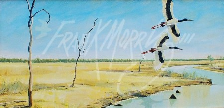 (SK4) Disturbed, 20 Mile Creek, Normanton  31x61 cm  SOLD