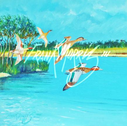 (Y795)  30x30 cm Garganeys Lake McKenzie   $300