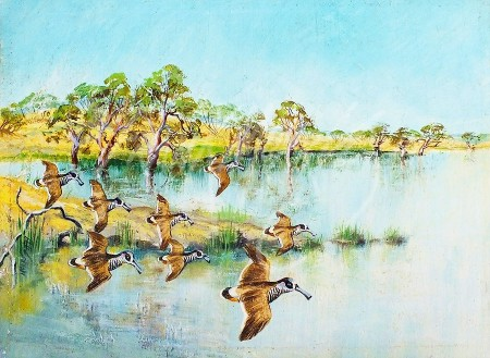 (135) Pink-eared Ducks, Hattah Lakes  15x20 cm SOLD