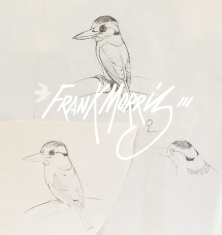 (PSKL2) Yellow-billed Kingfishers – a selection 57×40 cm $40