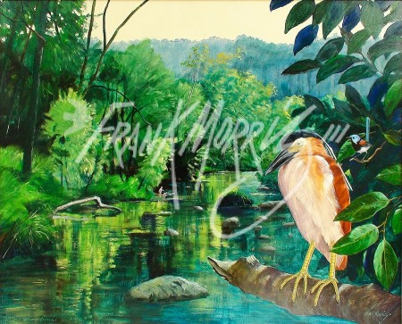 (Y483) 76 x 91 cm Nature's Harmony Awakened (Night Heron and Fairy Wren) SOLD
