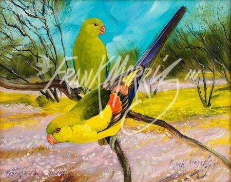 Regent's Flower Garden (Regent Parrots)