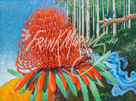 (Y711) Then the First Waratah Blooms Red Like Krubi's Cloak 90 x 122 cm