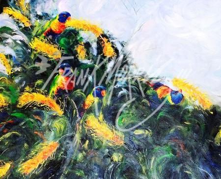 (Y399)Grevillea Rainbows71x85cm$450