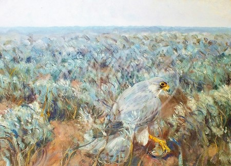(Y400) Saltbush Seizure  61x85 cm