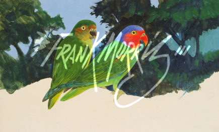 (YLSk1)  Red-cheeked Parrots  27x40 cm $200
