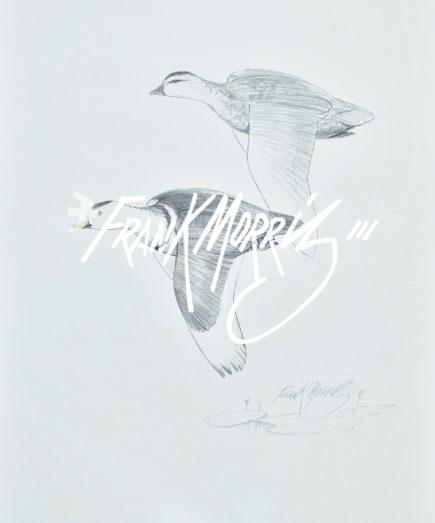 (YPC122) White Pygmy Geese 76x51 cm $160