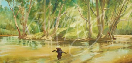 (SK12)  Green glow, Freshwater Creek  31x61 cm $350